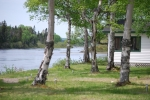 Gander River photos 002.jpg