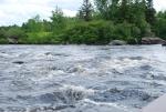 Gander River photos 051.jpg