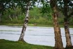 Gander River photos 014.jpg